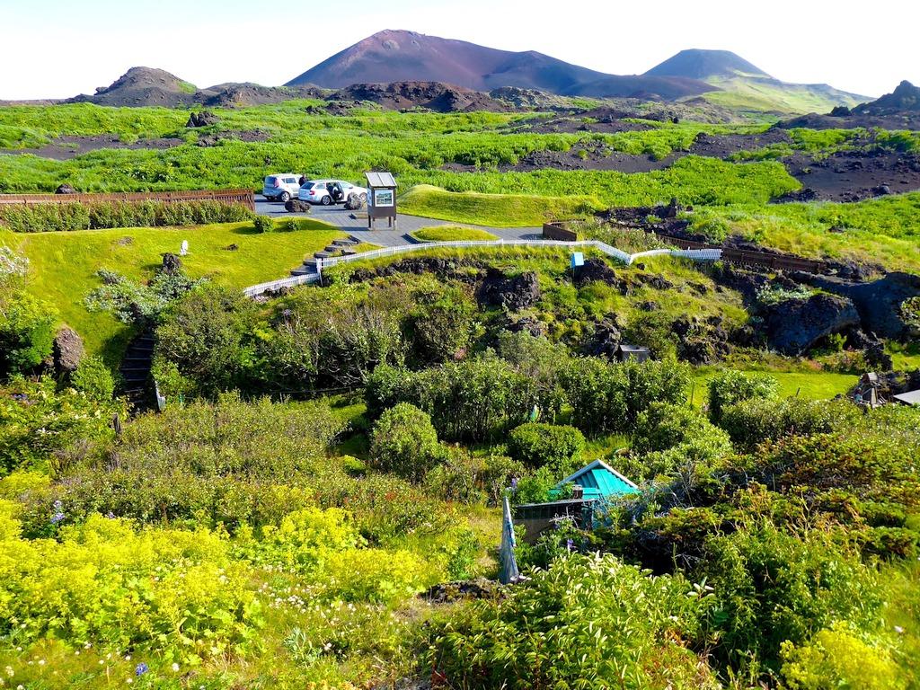 Grüne Landschaften auf den Westmänner Inseln