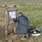 Wir pflanzen Bäume im Haukadalur Gebiet - Schild