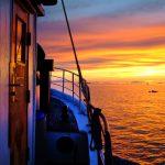Groenland, Grönland, Ostgroenland, Eis, Eisberge, Sonnenuntergang, Boot