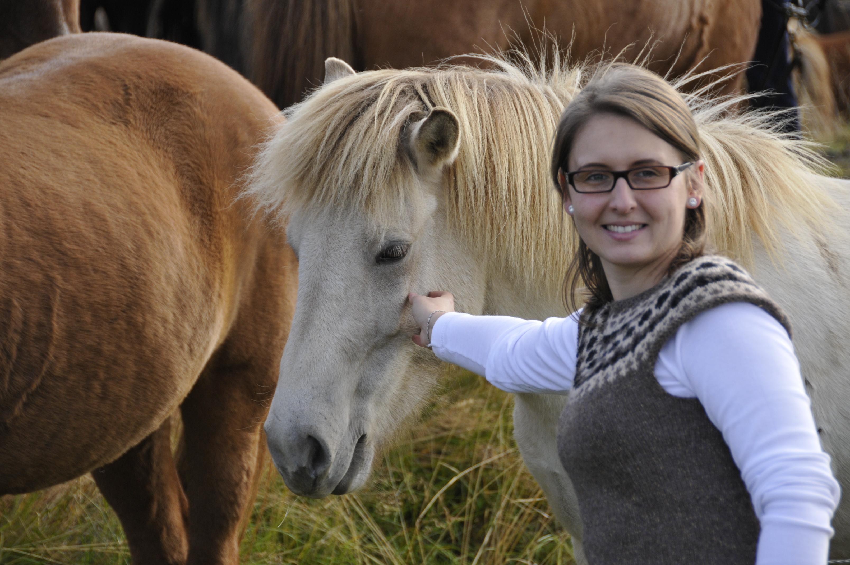 Pferdeabtrieb live erleben