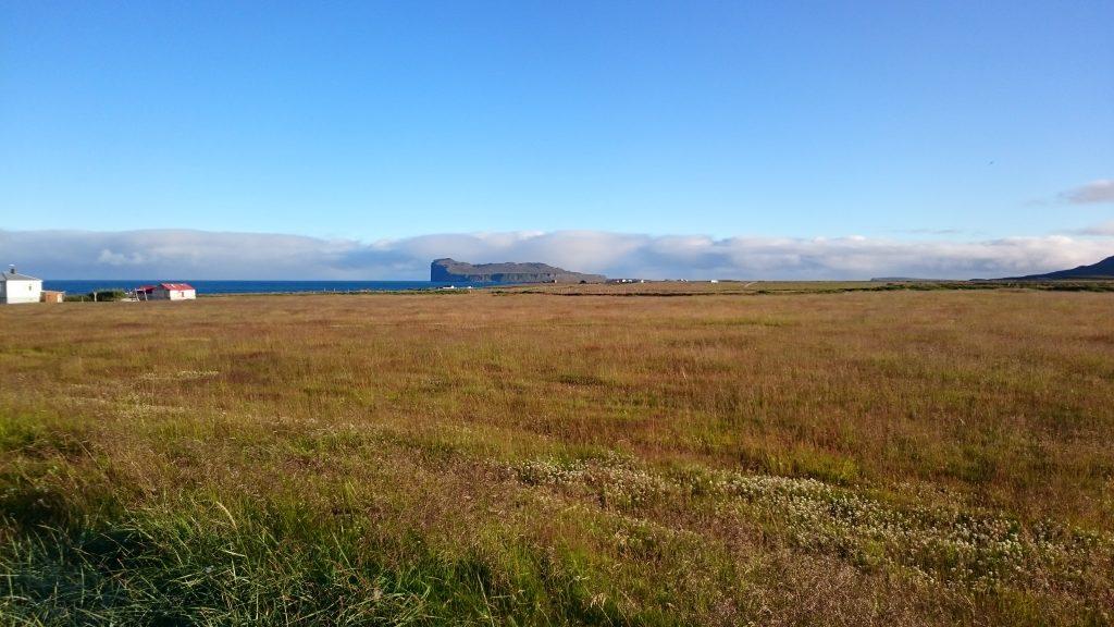 Wiese in Island - Klima und Geologie