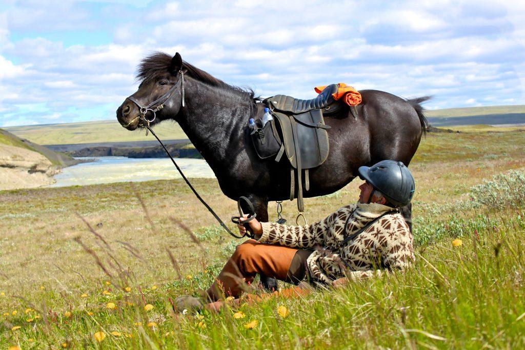Mensch liegt auf Wiese vor seinem Pferd
