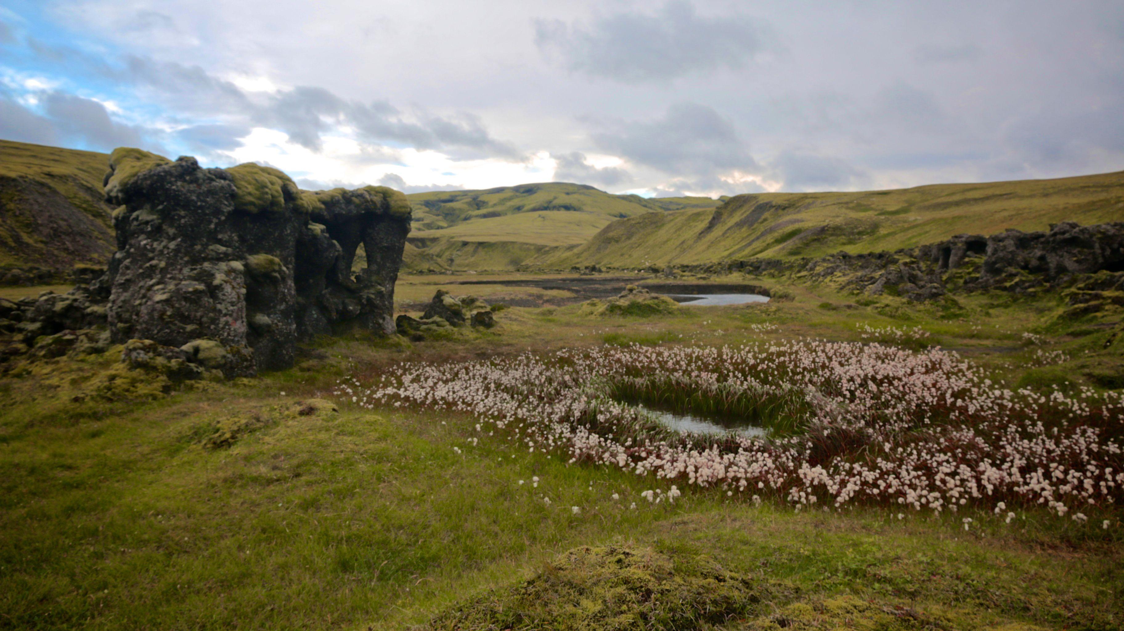 Grüne Täler auf dem Volcanic Trail