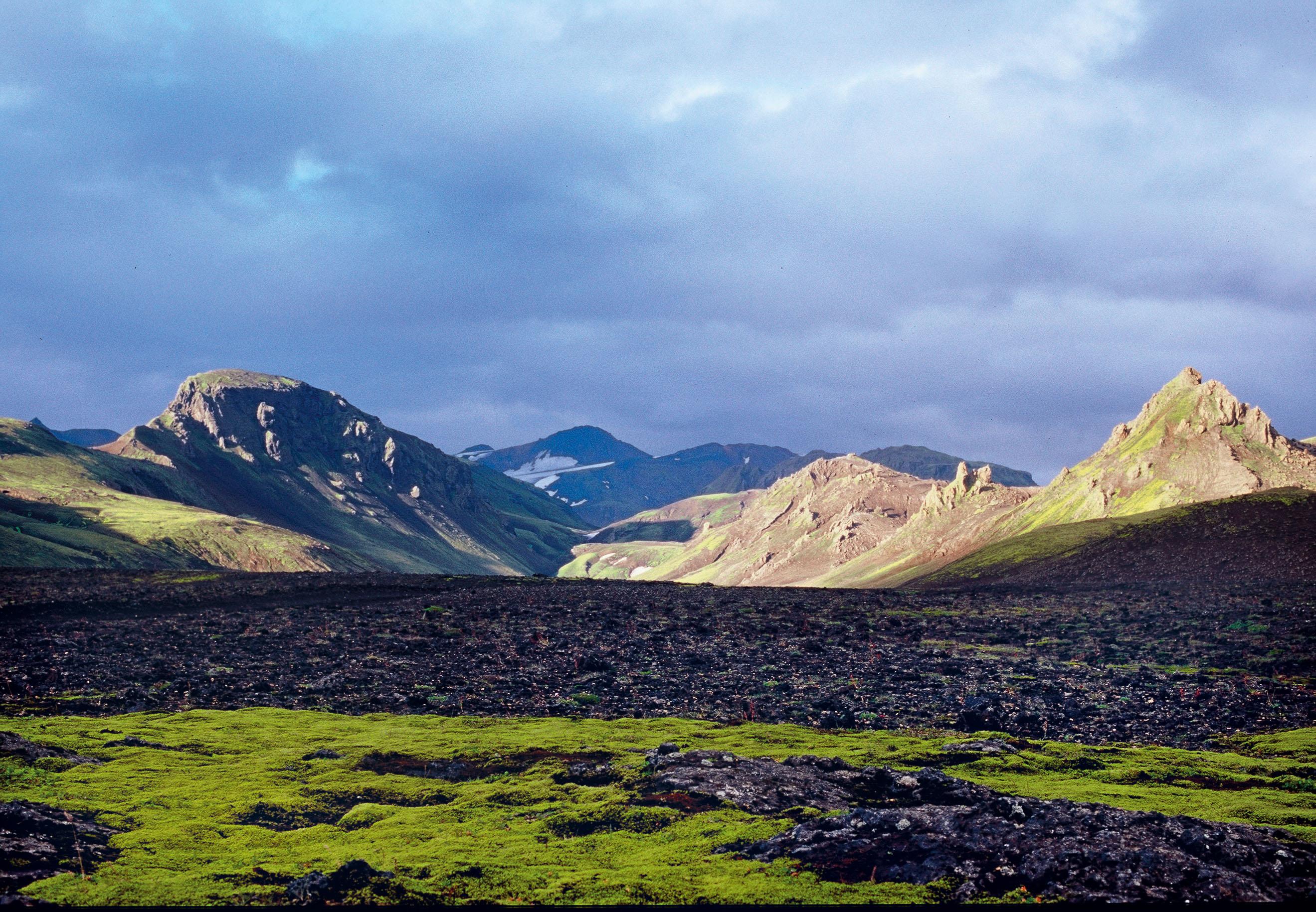 Island, Suedisland, Hochland, Landmannalaugar, bunte Berge, Ryholit, Moos, gruen