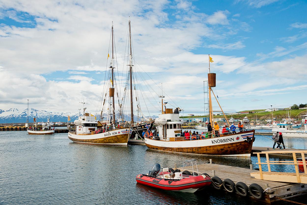 Island, Nordisland, Husavik, Hafen, Fischerboote, Boote, Dorf, Whale Watching Schiffe, Tourismus, WerbungPR, 7/2014