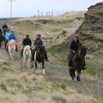 Katla Mitarbeiter reiten mit den Islandpferden durch die Frühjahrslandschaft