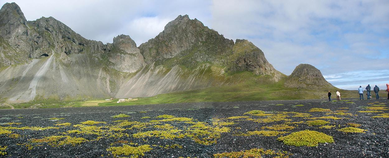 Island, Suedisland, Ostisland, Vestrahorn, Nahe Höfn, Berge, einsamer Bauernhof, Moos,