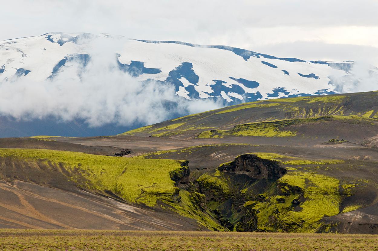 Moosbedecktes Vulkangestein vor dem schneebedeckten Vulkan Hekla in Island