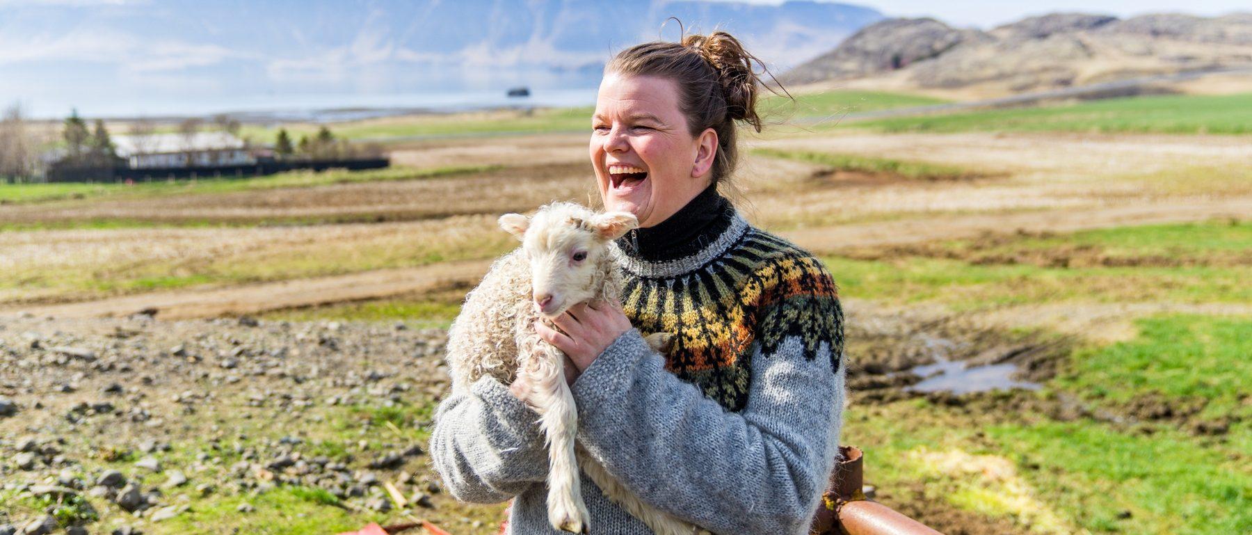Isländerin mit gestricktem Pulli und Lamm
