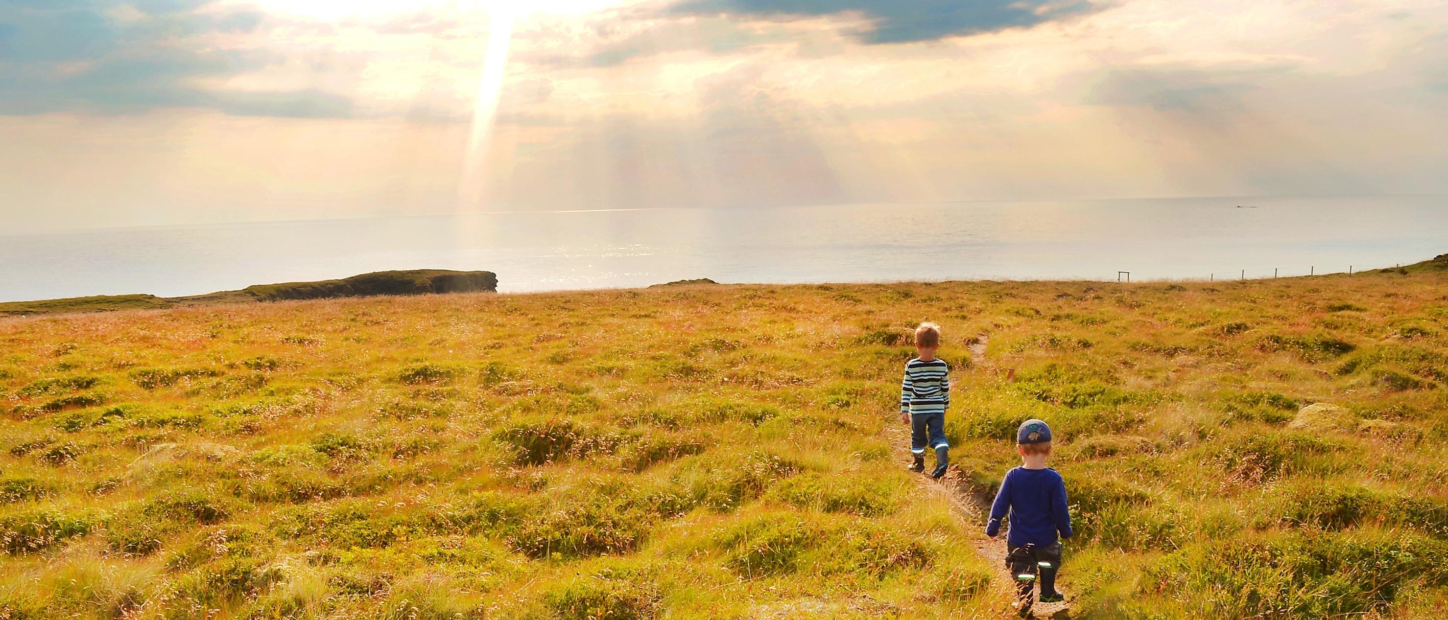 Kinder laufen bei Sonnenschein durch das Grasland auf Island