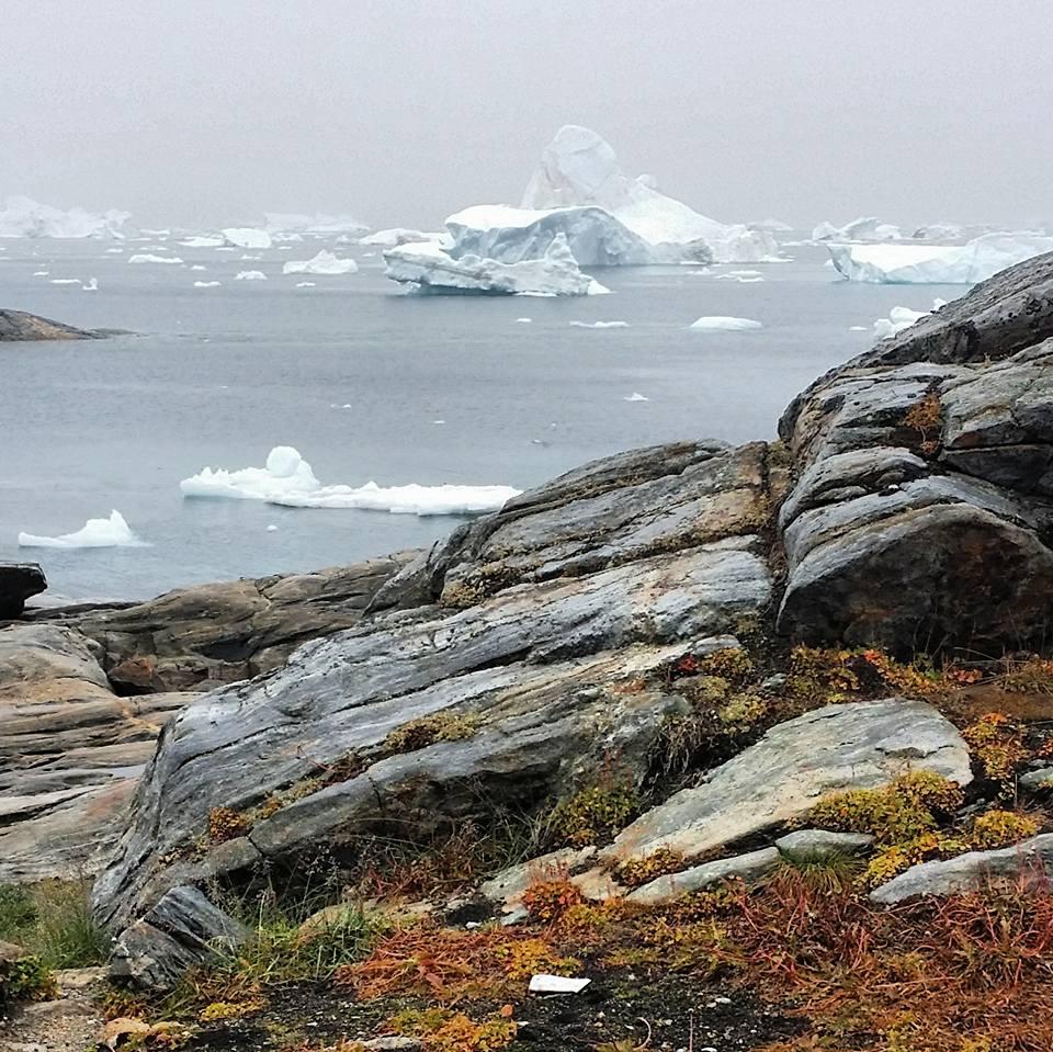Grönland mit treibenden Eisbergen