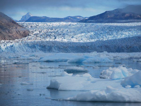 Südgrönland, treibende Eisberge