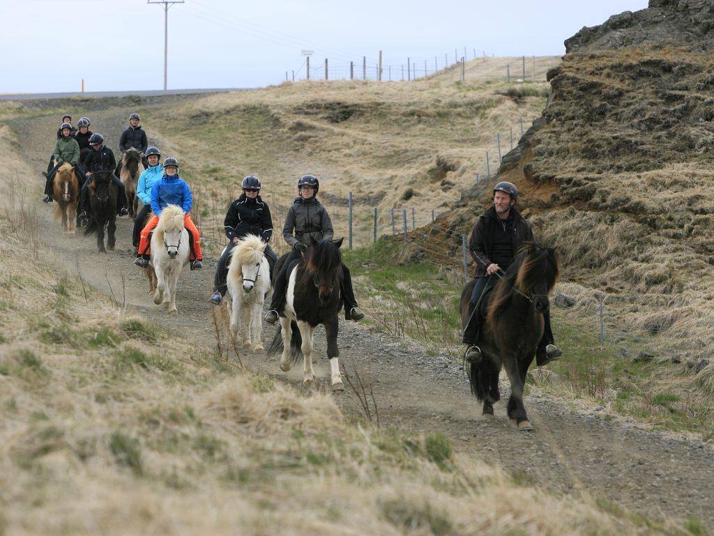 Gruppe von Reitern auf Islandpferden