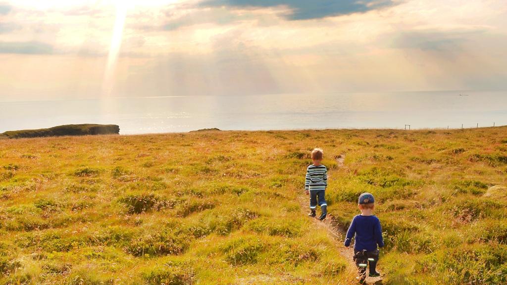 Kinder gehen über eine Wiese an Islands Küste