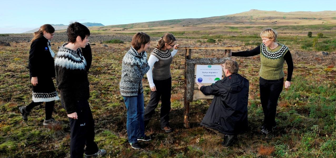 Katla Travel bringt das Sponsoringschild im Haukadalur Aufforstungsgebiet an.