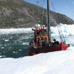 treibende Eisberge im Qooroq Eisfjörd