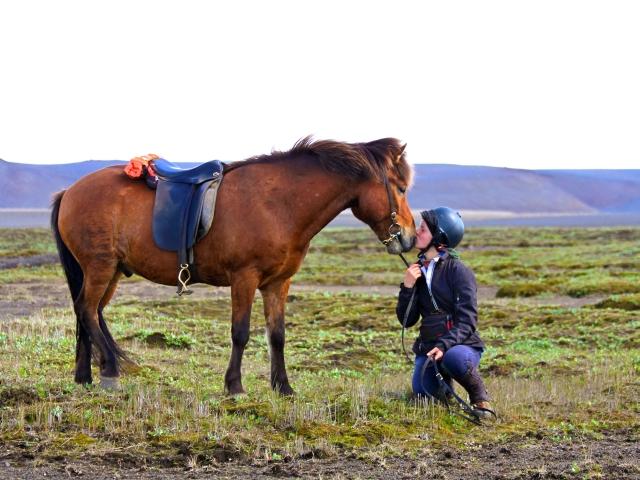 Reiterin mit Ihrem Pferd in Island