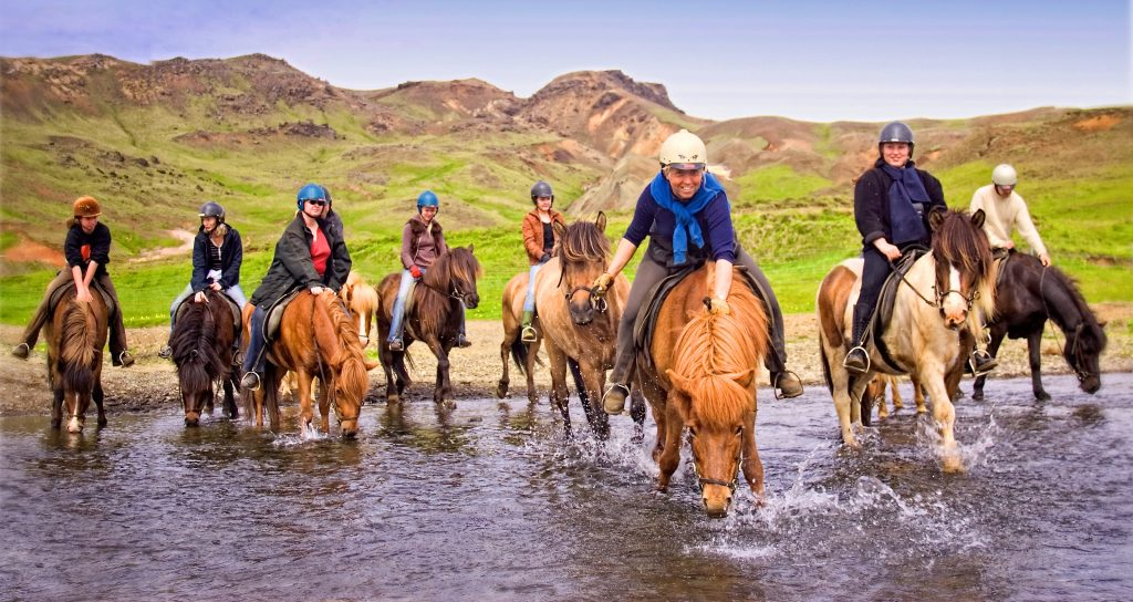 Pferde rasten am Wasser - Reittour durch Island