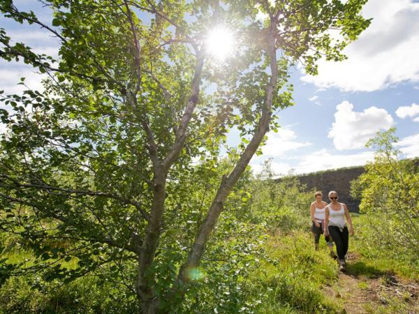 2 Frauen wandern in Island im Sommer