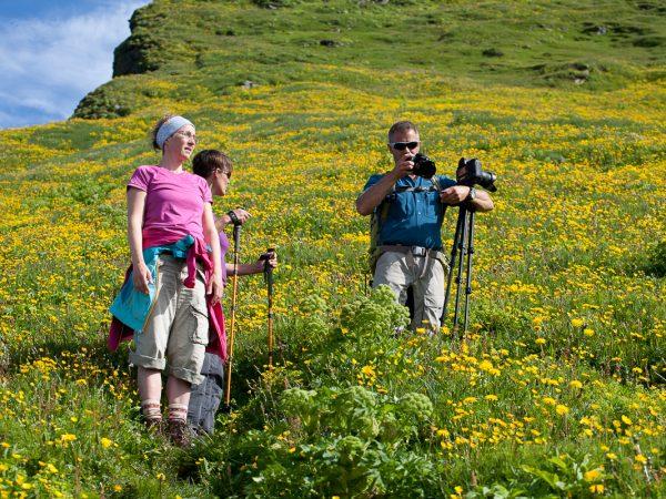 Wanderer macht Fotos auf einer grünen Wiese mit Blumen