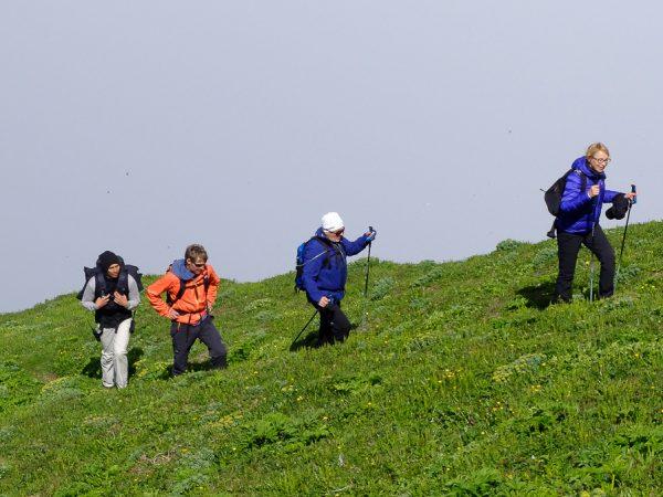 Wandergruppe auf grüner Wiese