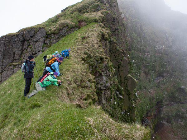 Wanderer schauen über eine Klippe und beobachten die Seevögel