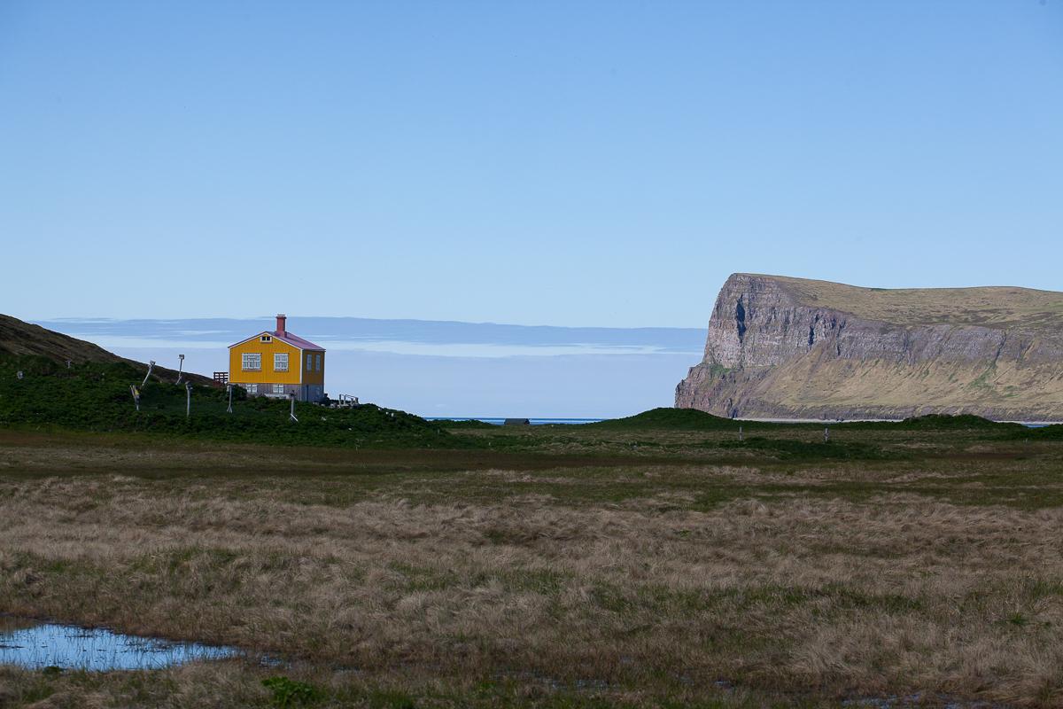einsames gelbes Häuschen in den Westfjorden in Island